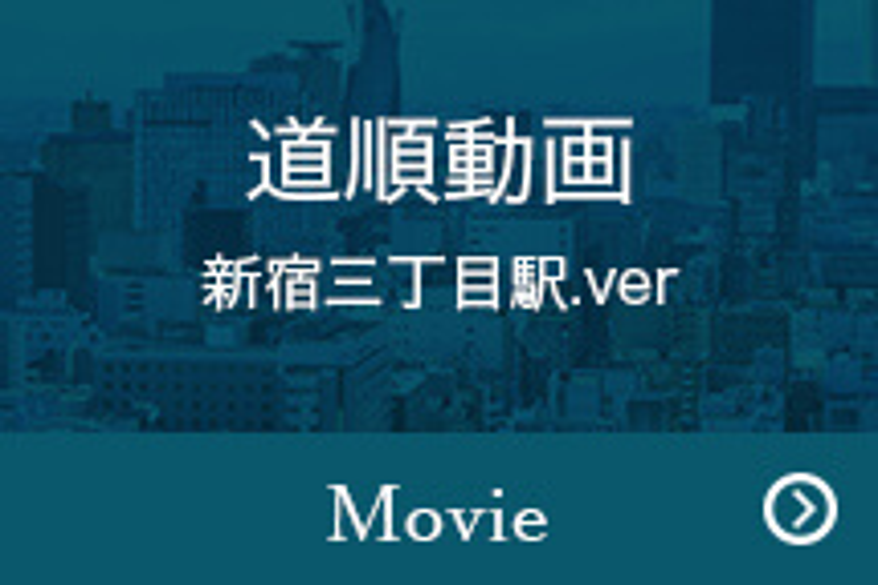 道順動画 新宿三丁目駅.ver